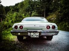 1972 - 350 V8
