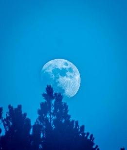 Magisk måne